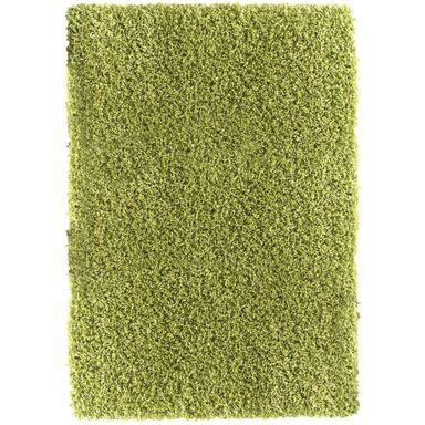 Dywan shaggy SAMUEL zielony 200 x 300 cm MULTI-DECOR