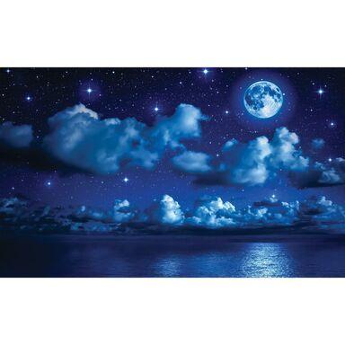 Fototapeta Księżycowa Noc 312 x 219 cm
