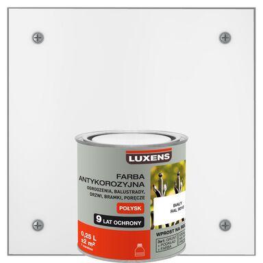 Farba antykorozyjna 0.25 l Biały Połysk LUXENS