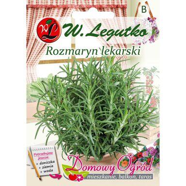 Rozmaryn lekarski nasiona tradycyjne 0.1 g W. LEGUTKO