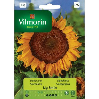 Słonecznik BIG SMILE nasiona tradycyjne 0.5 g VILMORIN