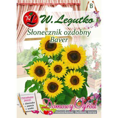 Nasiona kwiatów BAVER Słonecznik ozdobny W. LEGUTKO