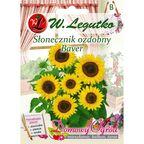 Słonecznik ozdobny BAVER nasiona tradycyjne 2 g W. LEGUTKO