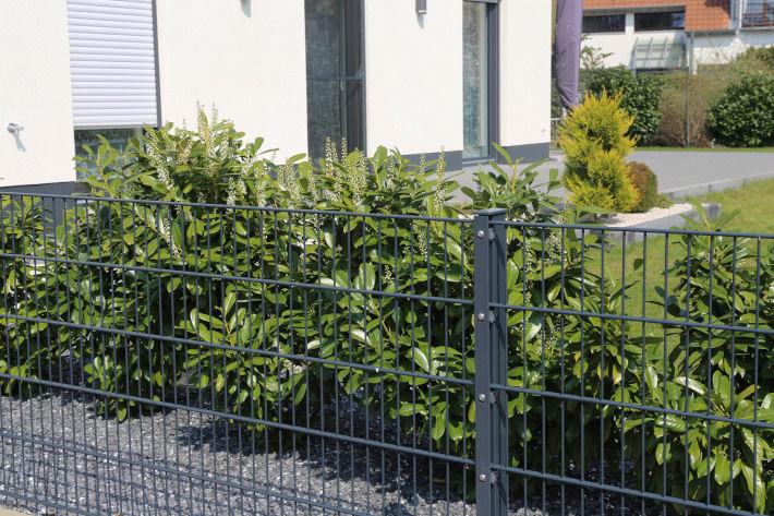 Ogrodzenie metalowe wokół domu i ogrodu
