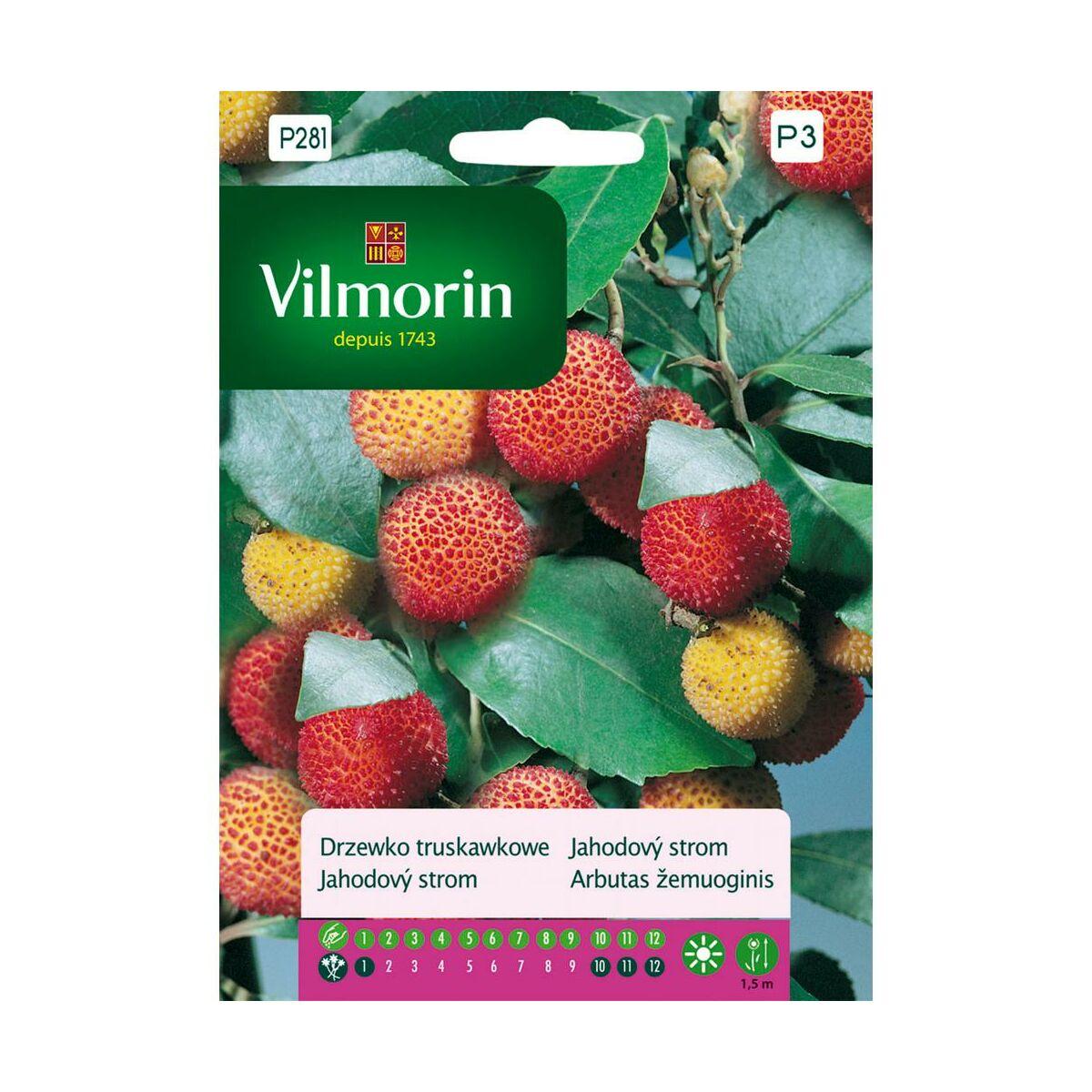 Drzewko truskawkowe nasiona tradycyjne 0.1 g VILMORIN