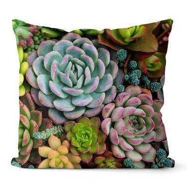 Poduszka bawełniana Cleo Sukulenty zielona 43 x 43 cm