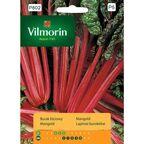 Burak liściowy (Boćwina) RHUBARB CHARD nasiona tradycyjne 10 g VILMORIN