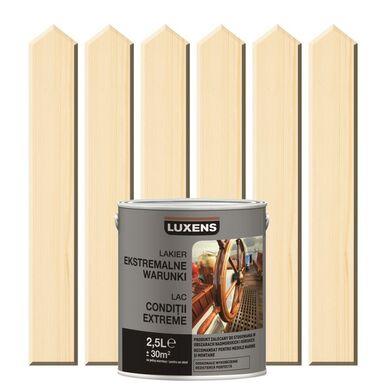 Lakier zewnętrzny do drewna EKSTREMALNA WARUNKI 2.5 l Bezbarwny LUXENS