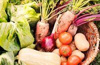 Najczęściej uprawiane warzywa w naszych ogrodach