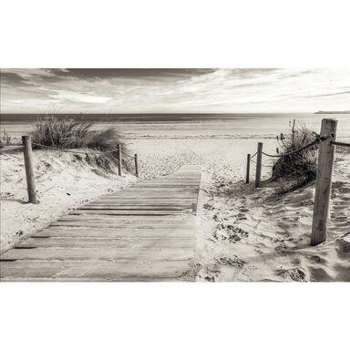 Fototapeta Plaża Sepia 416 x 254 cm