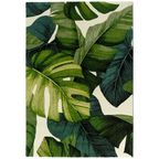 Dywan Daisy New zielony 160 x 220 cm