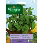 Mięta pieprzowa nasiona tradycyjne 0.1 g VILMORIN
