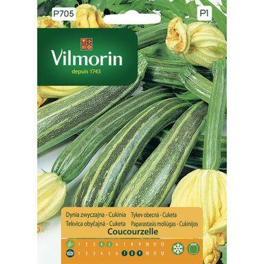 Nasiona warzyw COUCOURZELLE Dynia zwyczajna VILMORIN