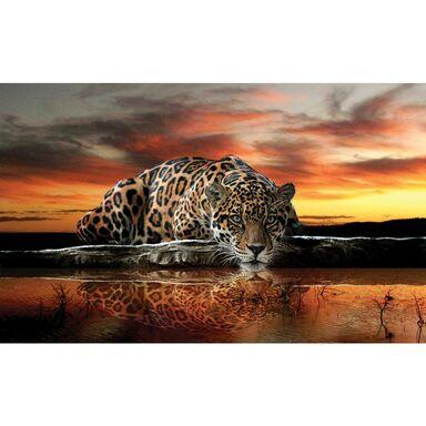 Fototapeta TIGER 184 x 254 cm