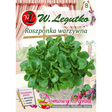 Roszponka warzywna nasiona tradycyjne 2 g W. LEGUTKO