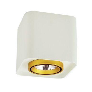Oprawa natynkowa XENO IP20 biała LED POLUX