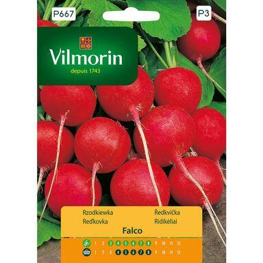 Rzodkiewka FALCO nasiona tradycyjne 5 g VILMORIN