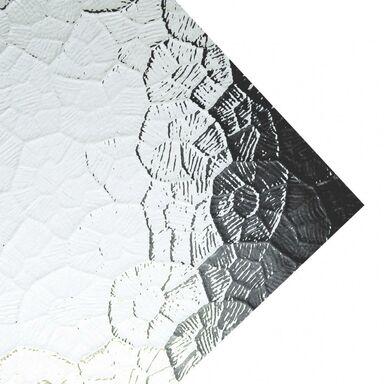 Szkło syntetyczne GNIAZDA Przejrzyste 54 x 44 cm ROBELIT