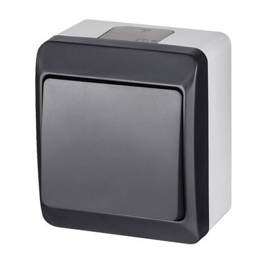 Włącznik pojedynczy IP44  Szary/antracytowy  ELEKTRO-PLAST