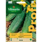 Ogórek gruntowy REGAL nasiona tradycyjne 15 szt. VILMORIN