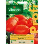 Pomidor szklarniowy BIG MAMA VILMORIN
