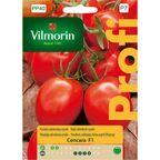 Pomidor szklarniowy CENCARA nasiona tradycyjne 0.2 g VILMORIN