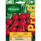 Rzodkiewka TINTO nasiona tradycyjne 5 g VILMORIN