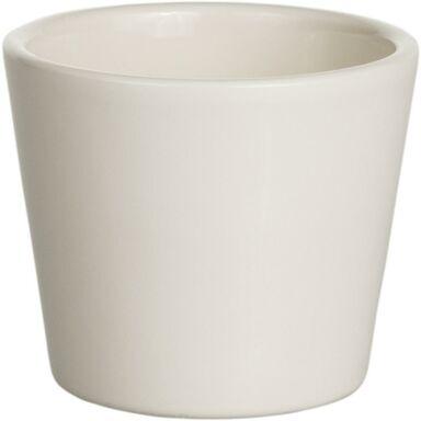 Osłonka Na Doniczkę 10 Cm Ceramiczna Kremowa Kaktus Cermax