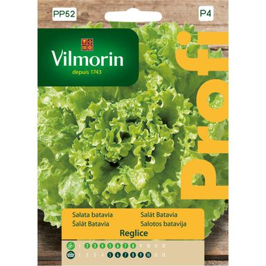 Sałata gruntowa batavia REGLICE nasiona tradycyjne 0.5 g VILMORIN