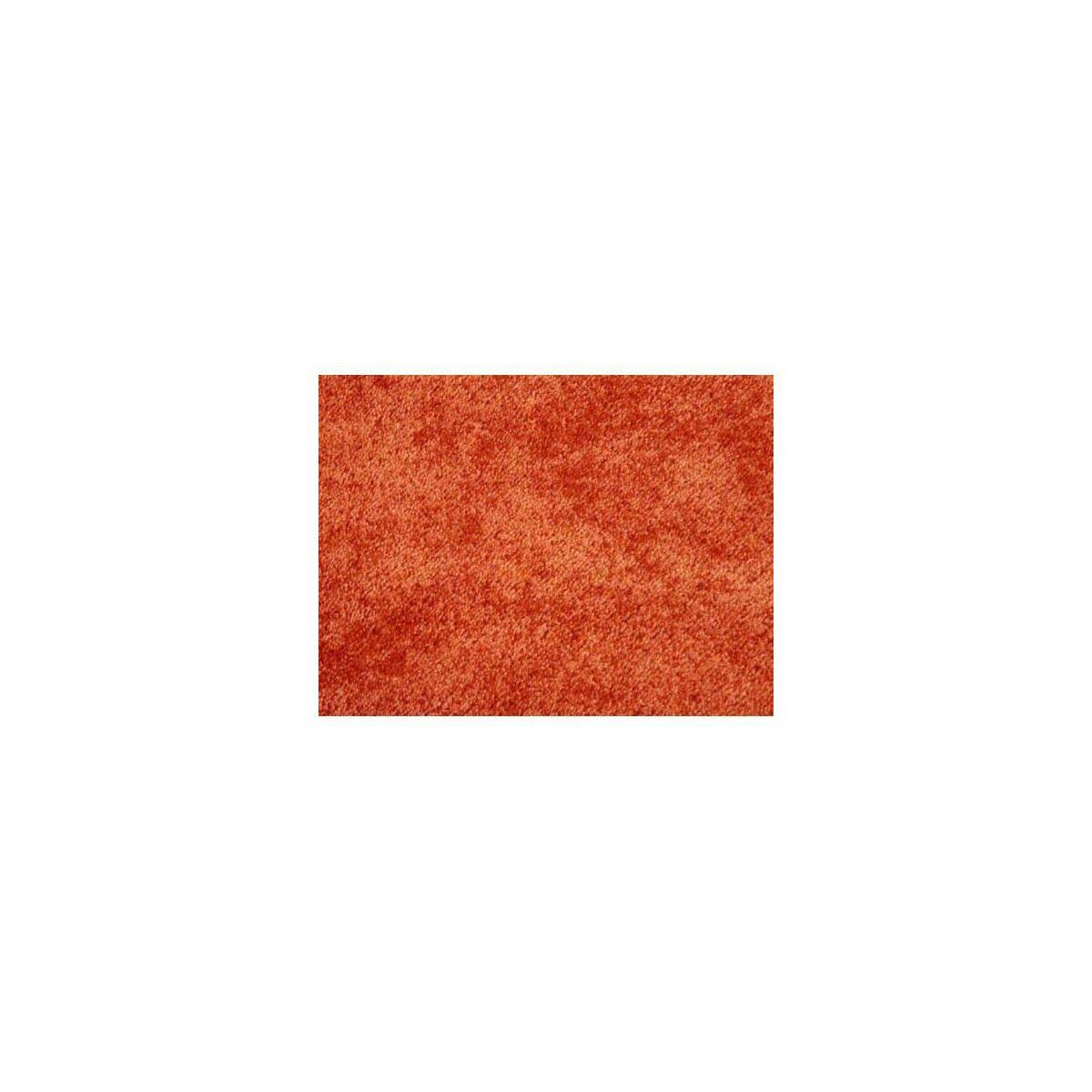 Wyk adzina dywanowa roma sprawd opinie w leroy merlin for Leroy merlin roma laurentina roma