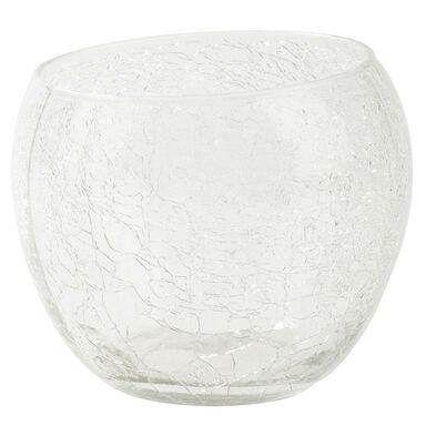 Osłonka do storczyka szklana 12 cm bezbarwna