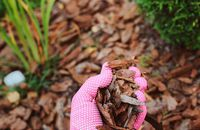 Ochrona roślin – jakie materiały do zabezpieczenia roślin wybrać?
