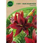 Cebulki kwiatów RED Lilia azjatycka 3szt. GEOLIA