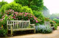 Ogród angielski – jak wygląda, czym się wyróżnia i jak go urządzić