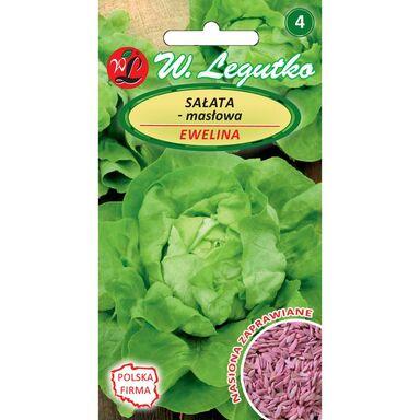Sałata głowiasta masłowa EWELINA nasiona zaprawiane 1 g W. LEGUTKO