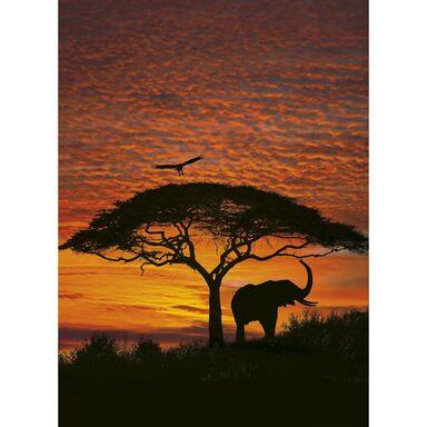 Fototapeta AFRICAN SUNSET 270 x 194 cm