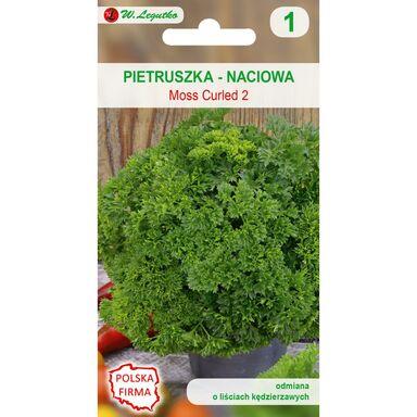 Nasiona warzyw MOSS CURLED 2 Pietruszka naciowa W. LEGUTKO
