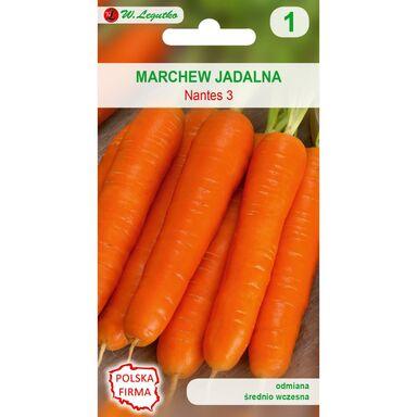 Nasiona warzyw NANTES 3 (NANTEJSKA) Marchew W. LEGUTKO