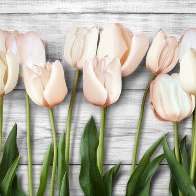 Panel kuchenny szklany Tulips 60 x 60 cm Alfa-Cer
