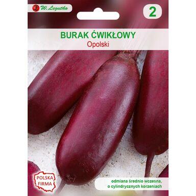 Burak ćwikłowy OPOLSKI CYLINDRYCZNY nasiona tradycyjne 10 g W. LEGUTKO