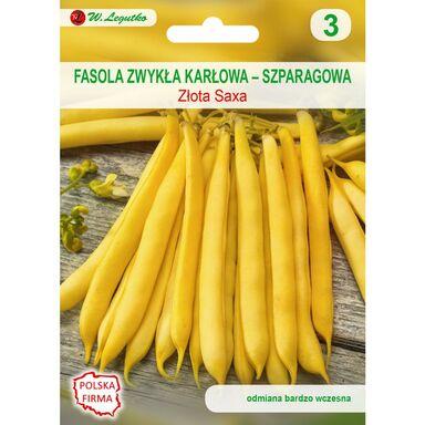 Nasiona warzyw ZŁOTA SAXA Fasola zwykła karłowa W. LEGUTKO