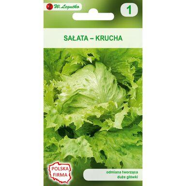 Sałata głowiasta krucha SAMBA nasiona tradycyjne 1 g W. LEGUTKO