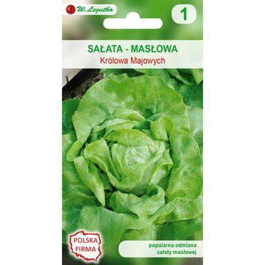 Sałata głowiasta masłowa MAY KING - KRÓLOWA MAJOWYCH nasiona tradycyjne 1 g W. LEGUTKO