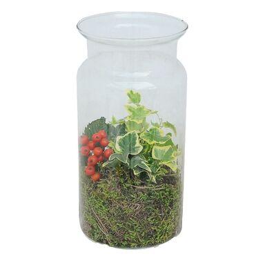 Bluszcz w szklanym wazonie MIX 25 cm