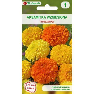 Nasiona kwiatów MIESZANKA Aksamitka wzniesiona W. LEGUTKO
