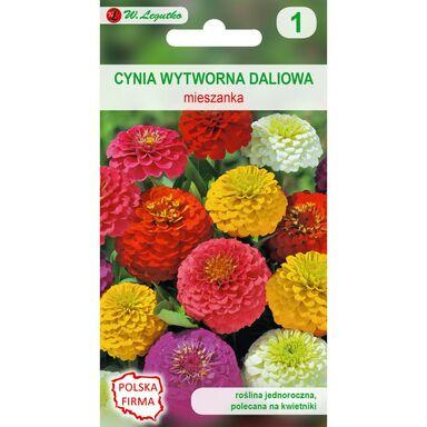 Nasiona kwiatów MIESZANKA Cynia wytworna daliowa W. LEGUTKO