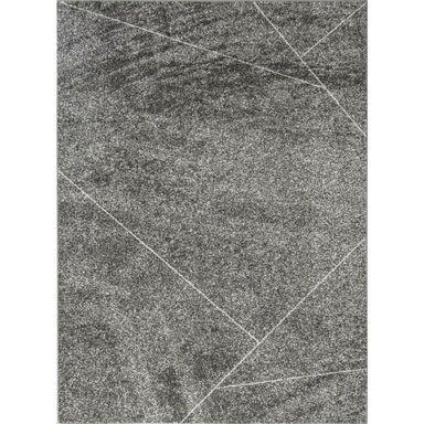 Dywan GABI szary 200 x 300 cm