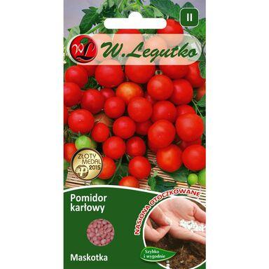 Pomidor gruntowy karłowy MASKOTKA W. LEGUTKO