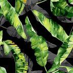 Panel kuchenny szklany Monstera black 60 x 60 cm Alfa-Cer
