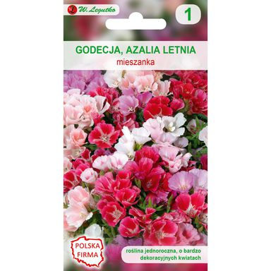 Nasiona kwiatów MIESZANKA Godecja (Azalia letnia) W. LEGUTKO